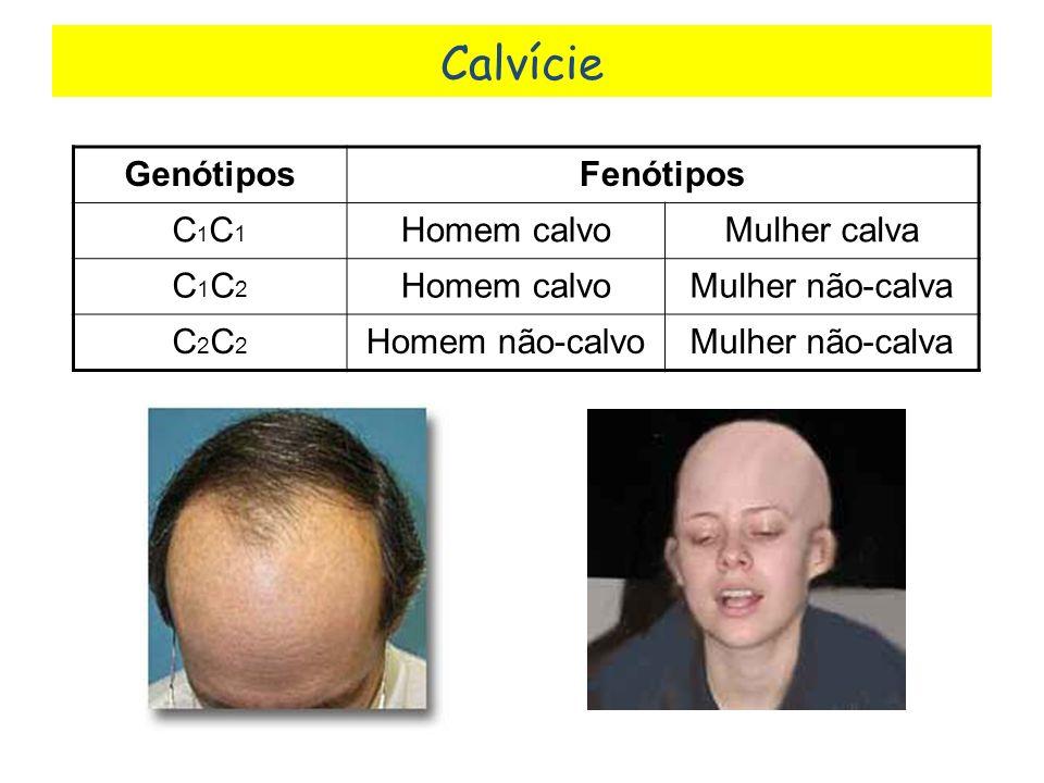 Calvície Genótipos Fenótipos C1C1 Homem calvo Mulher calva C1C2