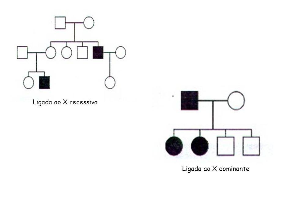 Ligada ao X recessiva Ligada ao X dominante