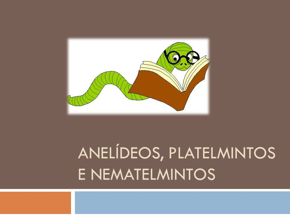 Ppt Video Online Carregar: ANELÍDEOS, PLATELMINTOS E NEMATELMINTOS
