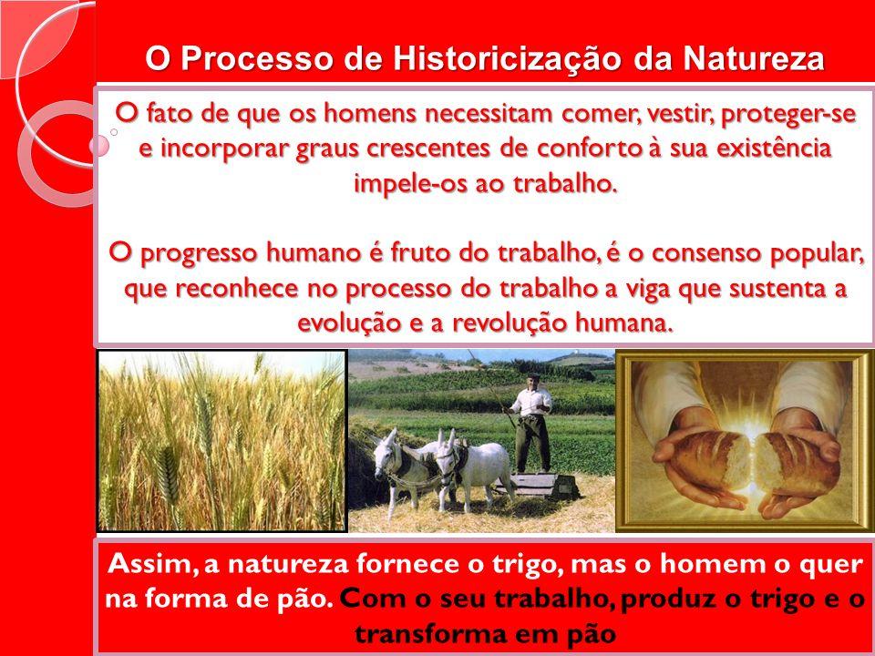 O Processo de Historicização da Natureza