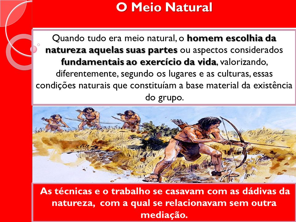 O Meio Natural