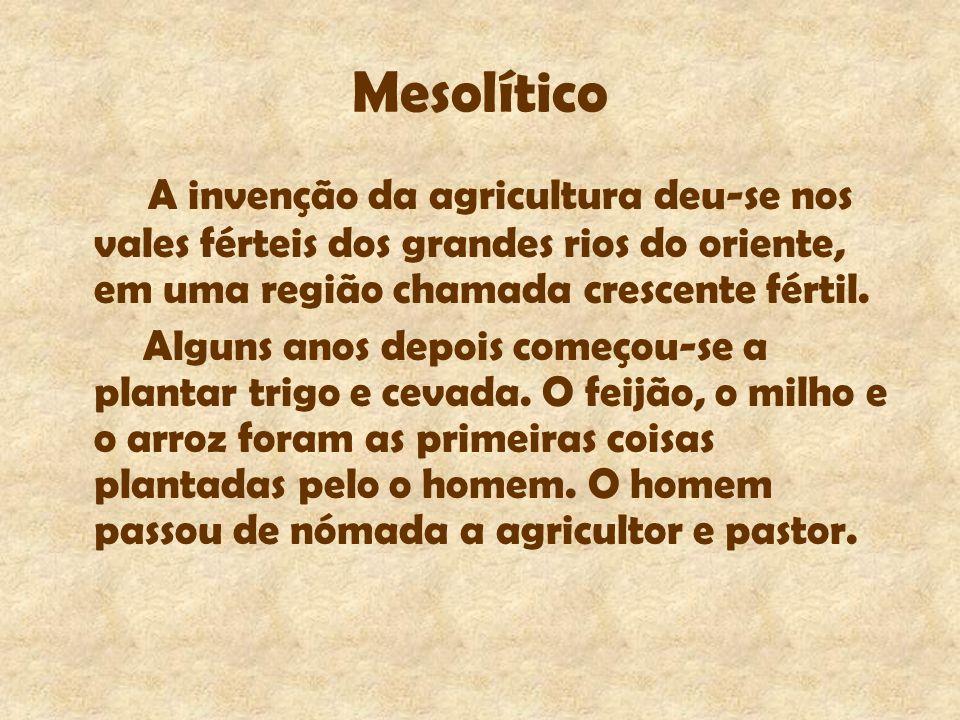 Mesolítico A invenção da agricultura deu-se nos vales férteis dos grandes rios do oriente, em uma região chamada crescente fértil.