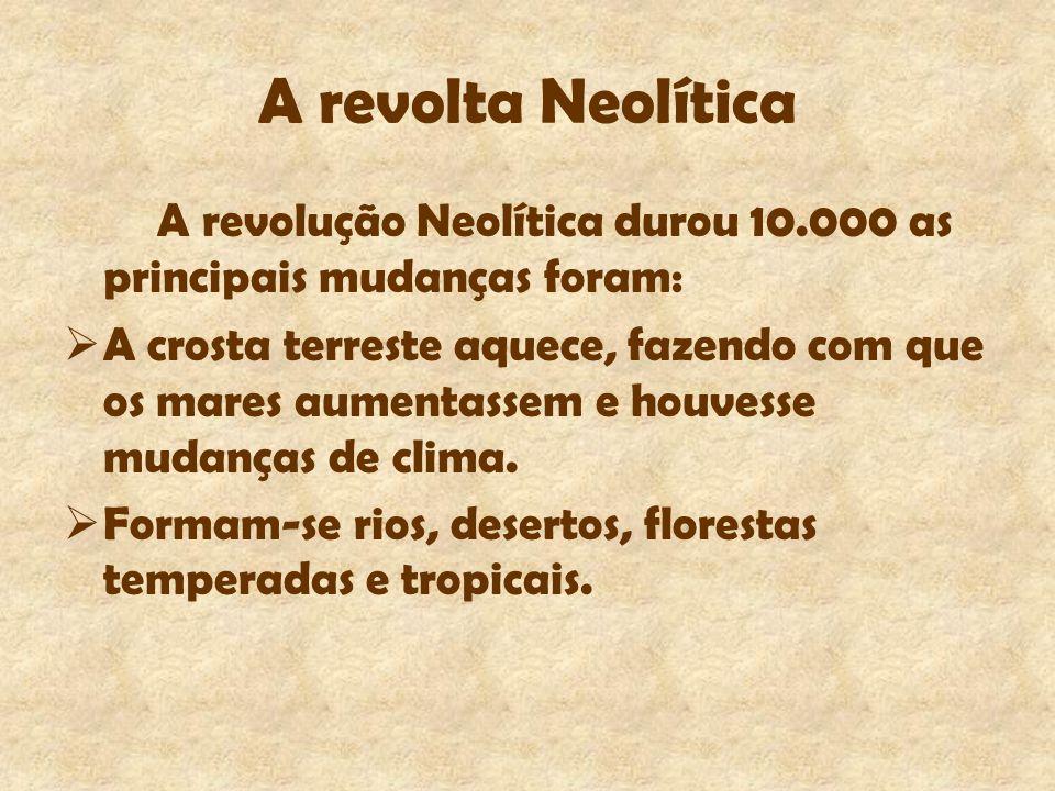 A revolta Neolítica A revolução Neolítica durou 10.000 as principais mudanças foram: