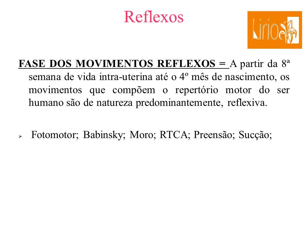 2121 Reflexos.