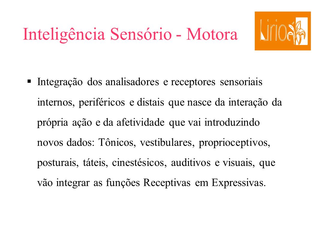 Inteligência Sensório - Motora