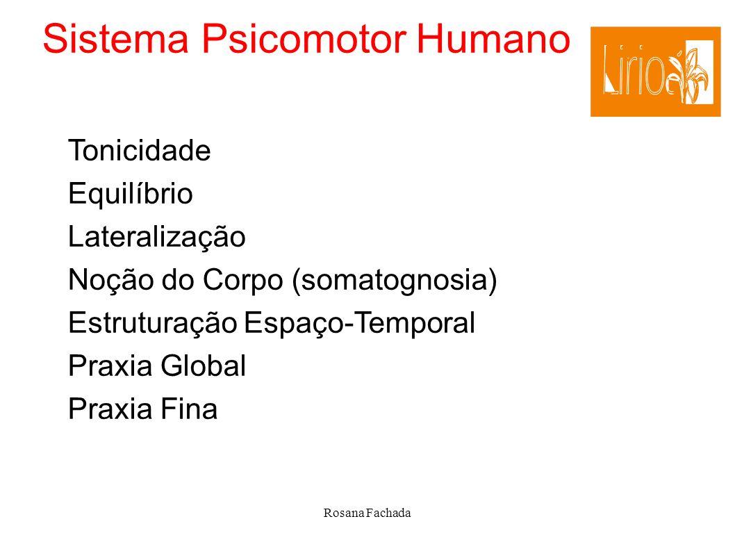 Sistema Psicomotor Humano