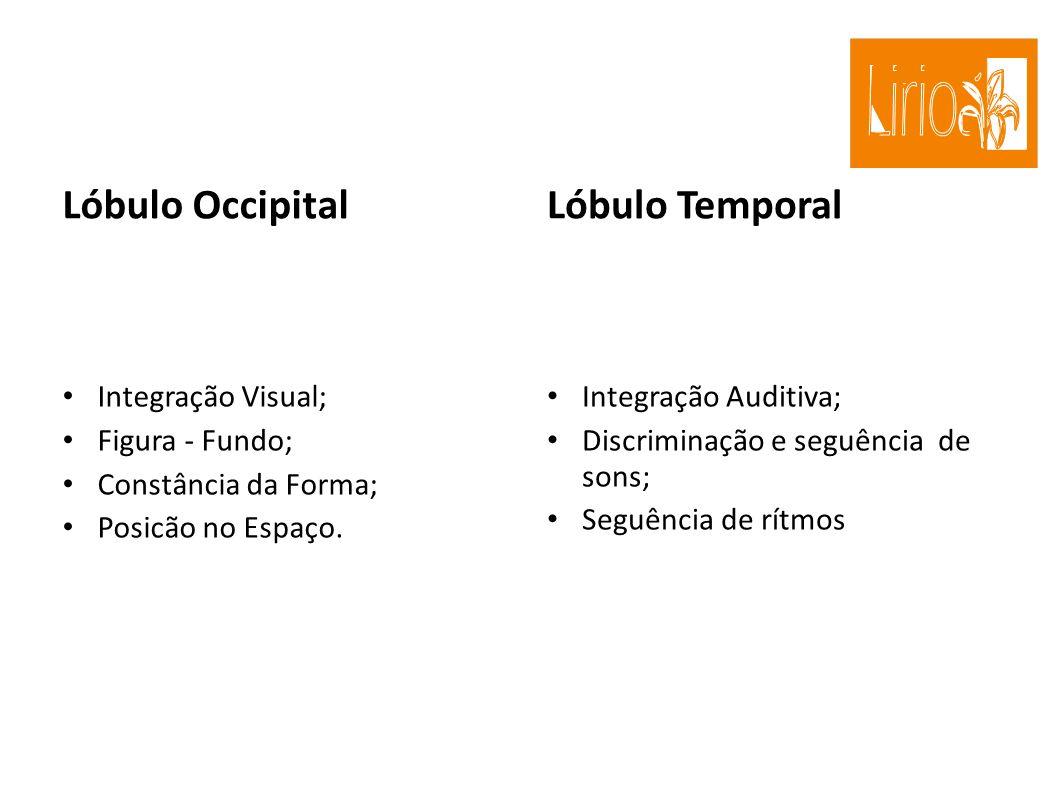 Lóbulo Occipital Lóbulo Temporal Integração Visual; Figura - Fundo;