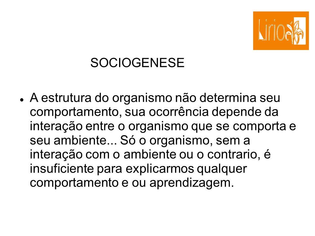 SOCIOGENESE
