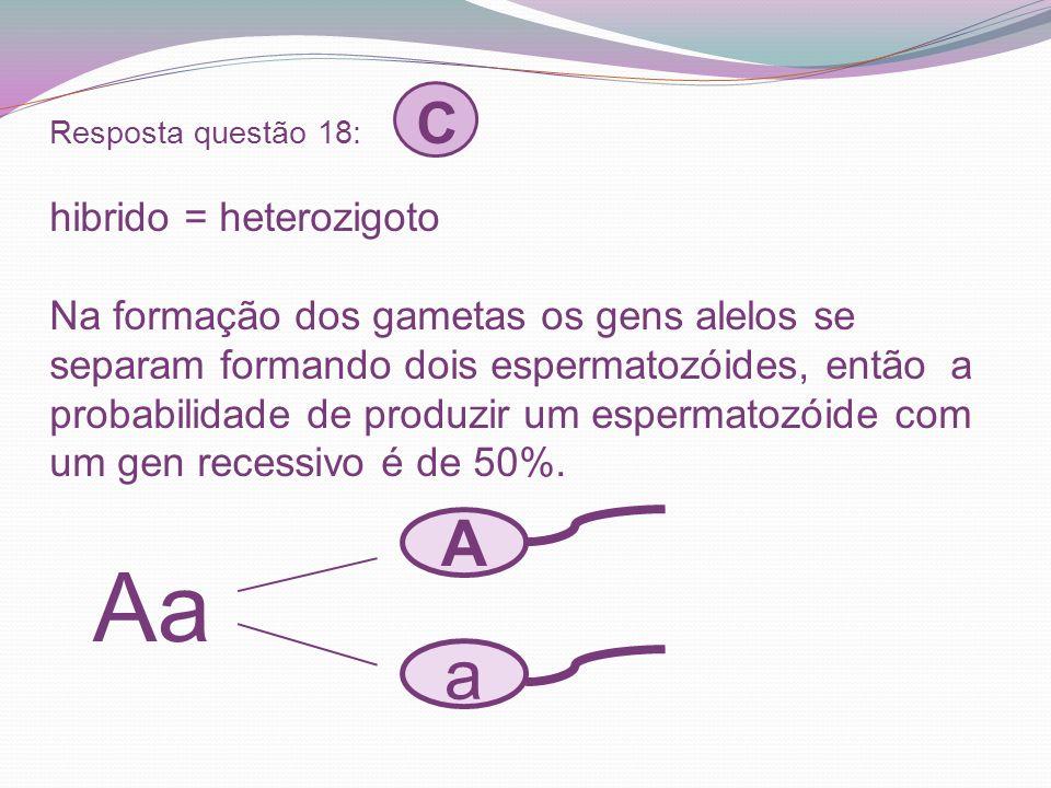 Resposta questão 18: C hibrido = heterozigoto Na formação dos gametas os gens alelos se separam formando dois espermatozóides, então a probabilidade de produzir um espermatozóide com um gen recessivo é de 50%.