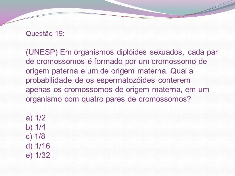 Questão 19: (UNESP) Em organismos diplóides sexuados, cada par de cromossomos é formado por um cromossomo de origem paterna e um de origem materna.