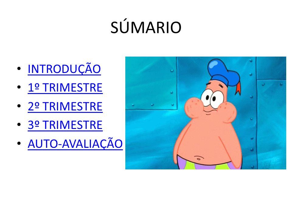 SÚMARIO INTRODUÇÃO 1º TRIMESTRE 2º TRIMESTRE 3º TRIMESTRE