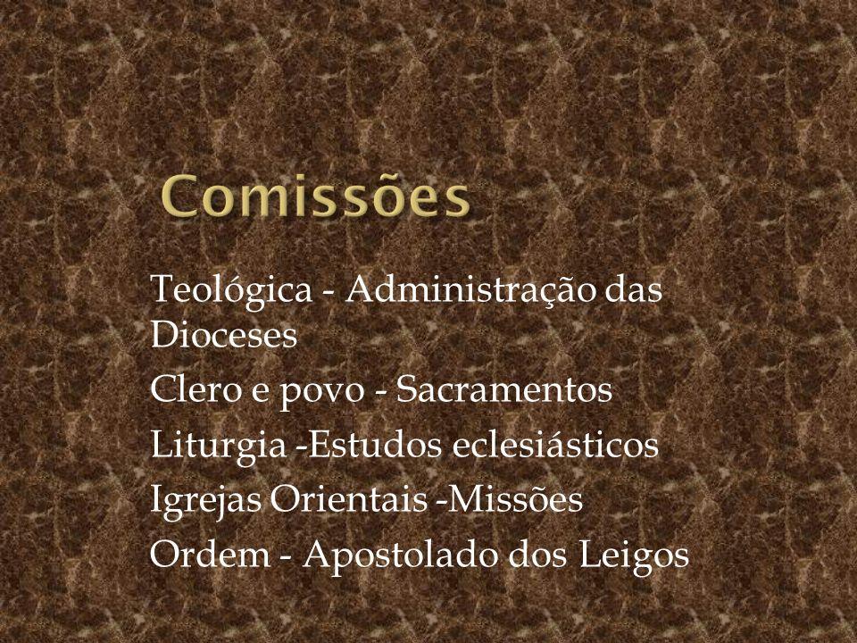 Comissões Teológica - Administração das Dioceses