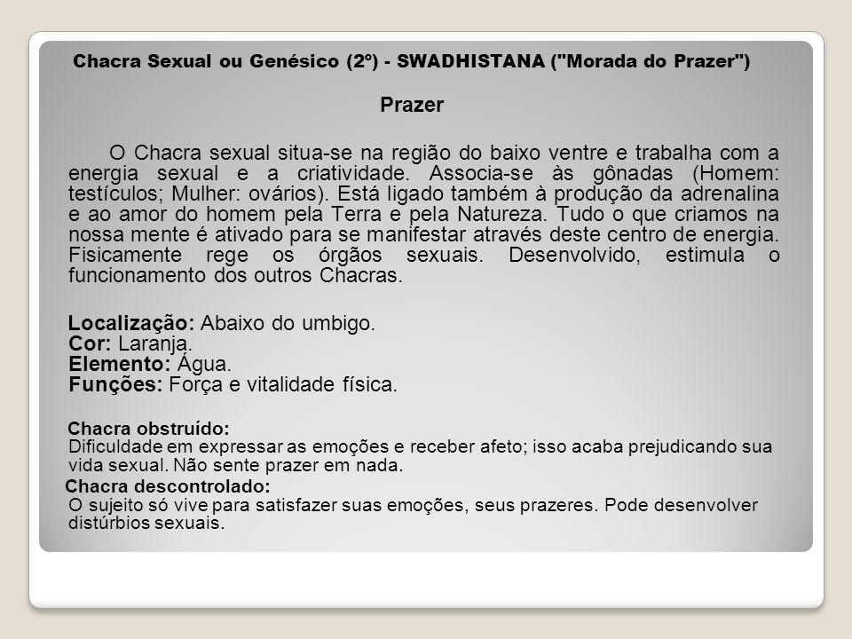 Chacra Sexual ou Genésico (2º) - SWADHISTANA ( Morada do Prazer )