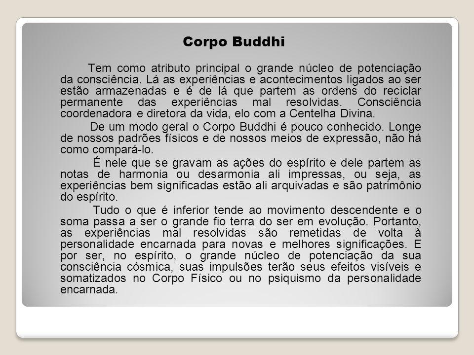 Corpo Buddhi