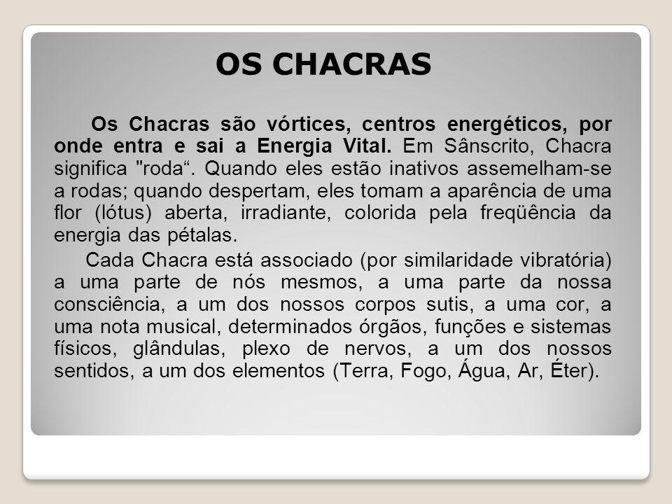 OS CHACRAS