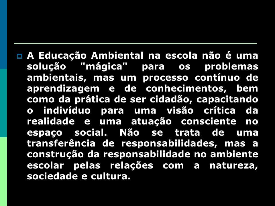 A Educação Ambiental na escola não é uma solução mágica para os problemas ambientais, mas um processo contínuo de aprendizagem e de conhecimentos, bem como da prática de ser cidadão, capacitando o indivíduo para uma visão crítica da realidade e uma atuação consciente no espaço social.