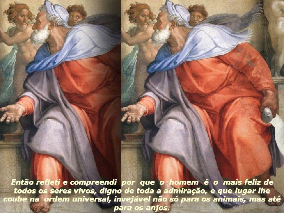 Então refleti e compreendi por que o homem é o mais feliz de todos os seres vivos, digno de toda a admiração, e que lugar lhe coube na ordem universal, invejável não só para os animais, mas até para os anjos.