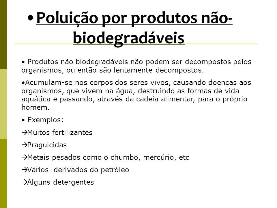 Poluição por produtos não-biodegradáveis