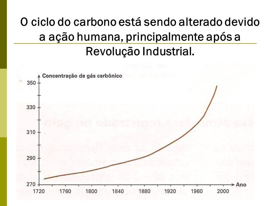O ciclo do carbono está sendo alterado devido a ação humana, principalmente após a Revolução Industrial.