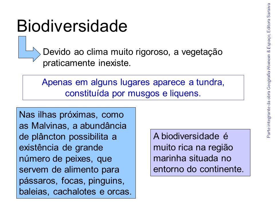 Biodiversidade Devido ao clima muito rigoroso, a vegetação praticamente inexiste.