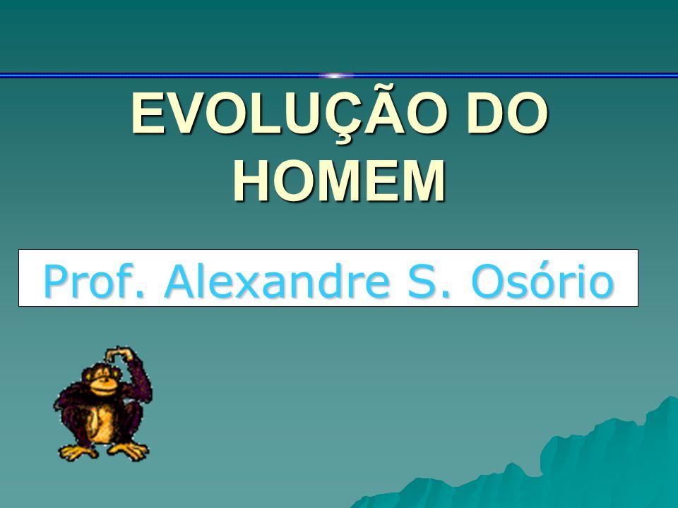 Prof. Alexandre S. Osório