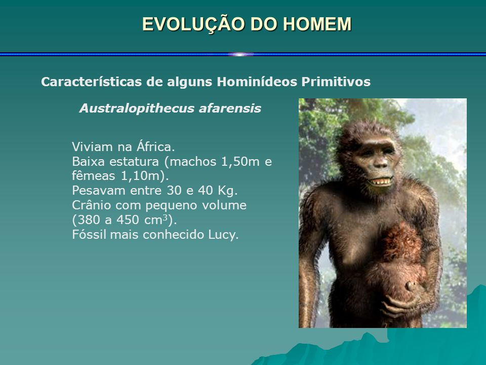 EVOLUÇÃO DO HOMEM Características de alguns Hominídeos Primitivos