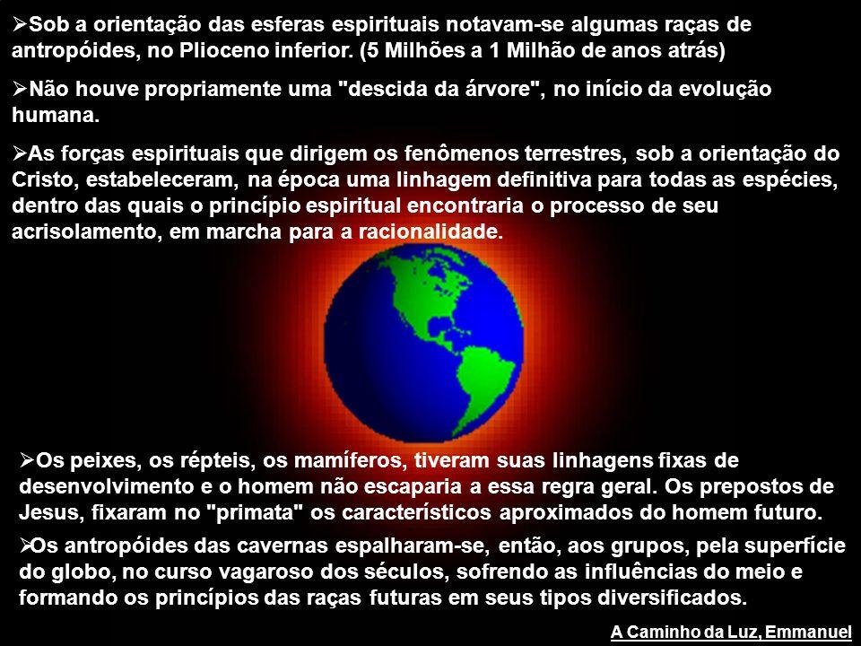 Sob a orientação das esferas espirituais notavam-se algumas raças de