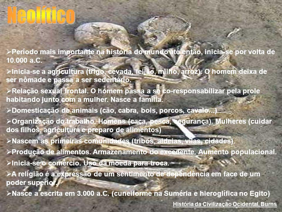 Neolítico Período mais importante na história do mundo até então, inicia-se por volta de 10.000 a.C.