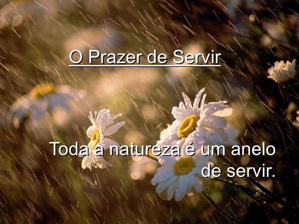 O Prazer de Servir Toda a natureza é um anelo de servir.