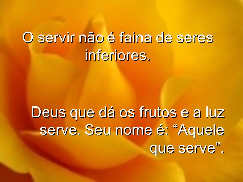 O servir não é faina de seres inferiores.