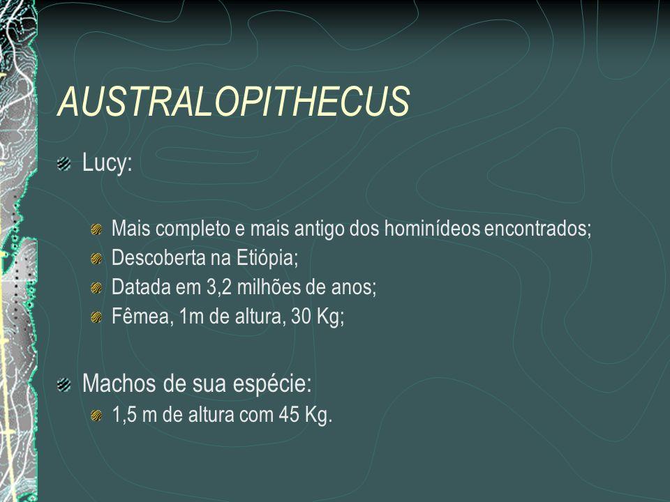 AUSTRALOPITHECUS Lucy: Machos de sua espécie: