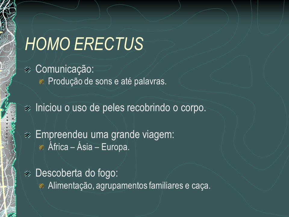HOMO ERECTUS Comunicação: Iniciou o uso de peles recobrindo o corpo.