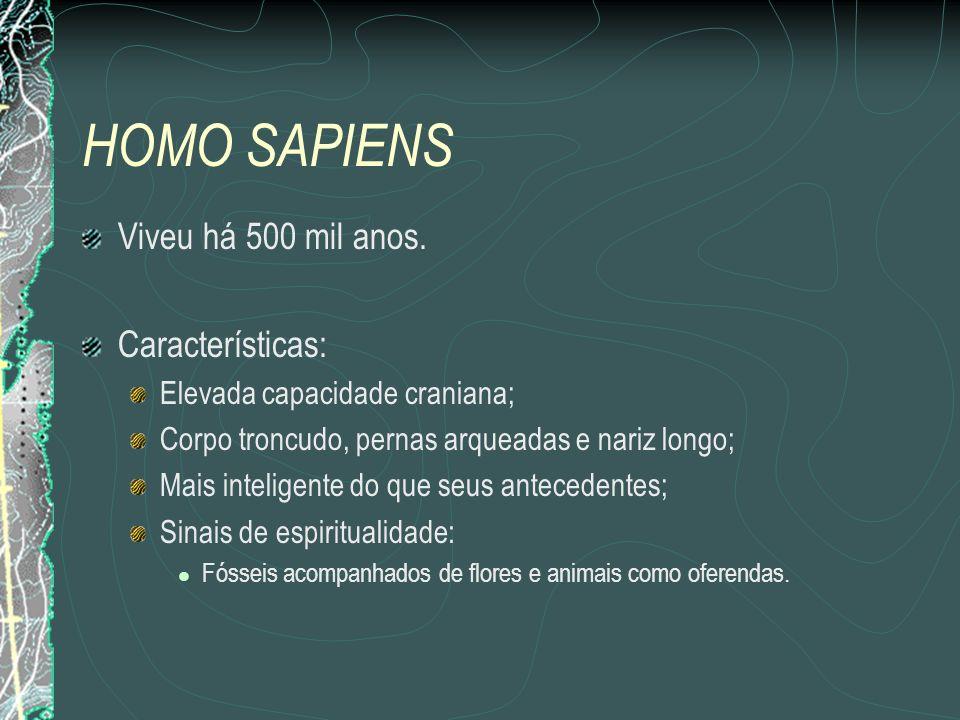 HOMO SAPIENS Viveu há 500 mil anos. Características: