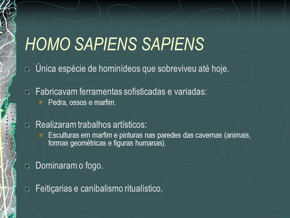 HOMO SAPIENS SAPIENS Única espécie de hominídeos que sobreviveu até hoje. Fabricavam ferramentas sofisticadas e variadas: