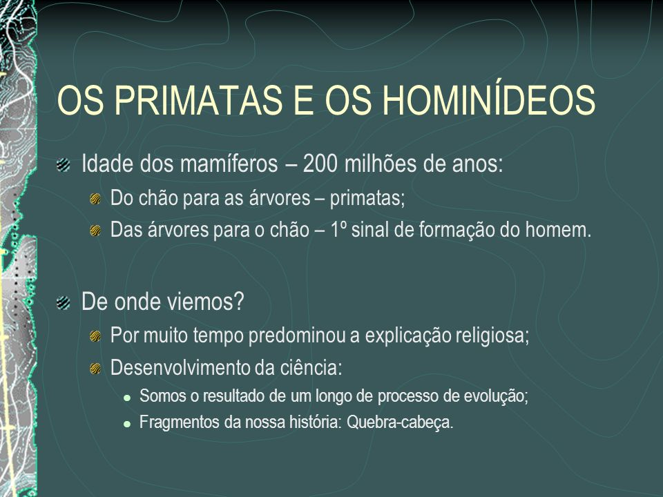 OS PRIMATAS E OS HOMINÍDEOS