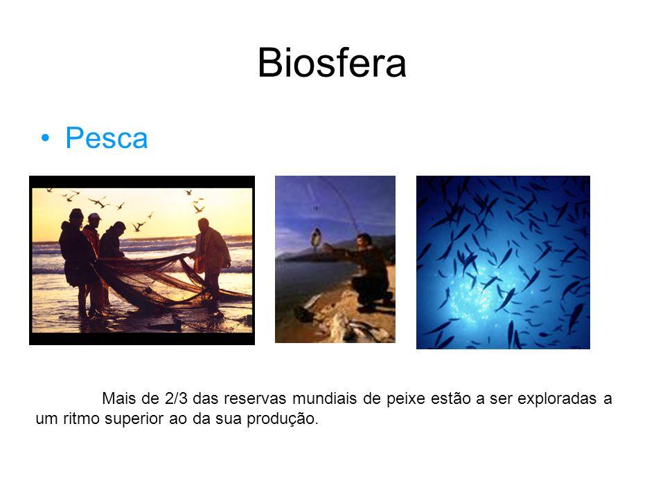Biosfera Pesca.