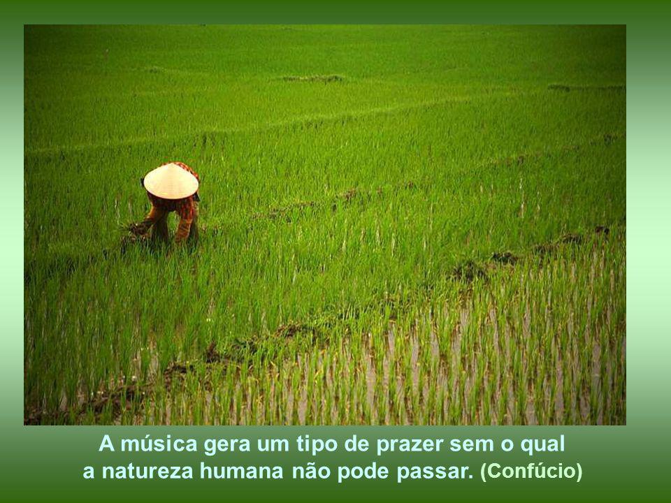 A música gera um tipo de prazer sem o qual