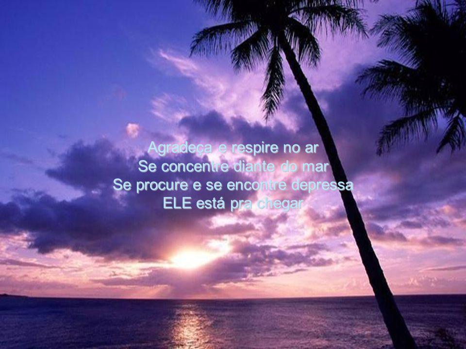 Agradeça e respire no ar Se concentre diante do mar Se procure e se encontre depressa ELE está pra chegar