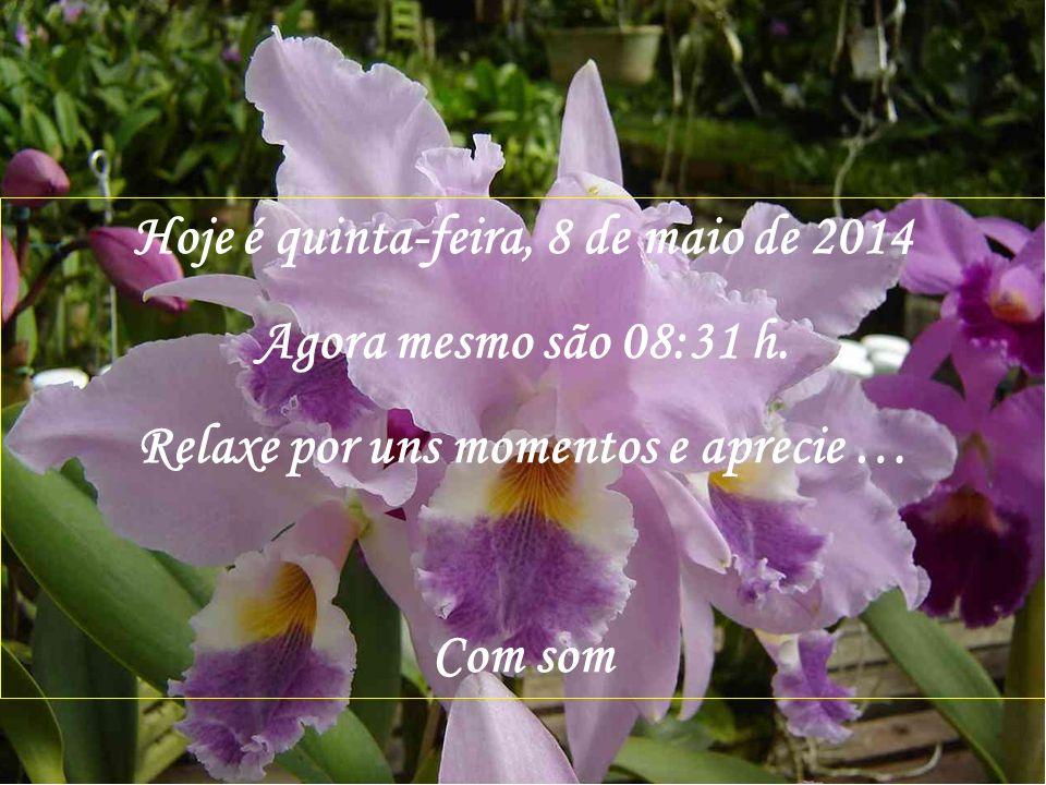 Hoje é quinta-feira, 30 de março de 2017 Agora mesmo são 21:34 h.