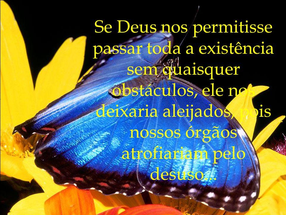 Se Deus nos permitisse passar toda a existência sem quaisquer obstáculos, ele nos deixaria aleijados, pois nossos órgãos atrofiariam pelo desuso...