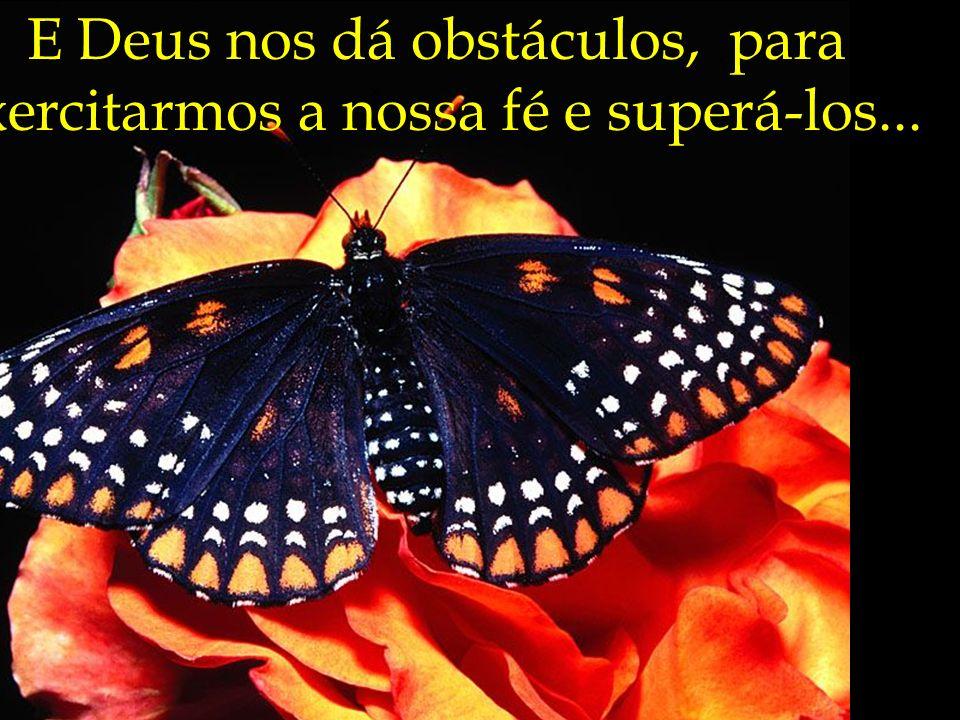 E Deus nos dá obstáculos, para exercitarmos a nossa fé e superá-los...