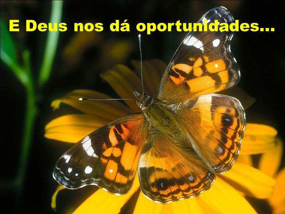 E Deus nos dá oportunidades...