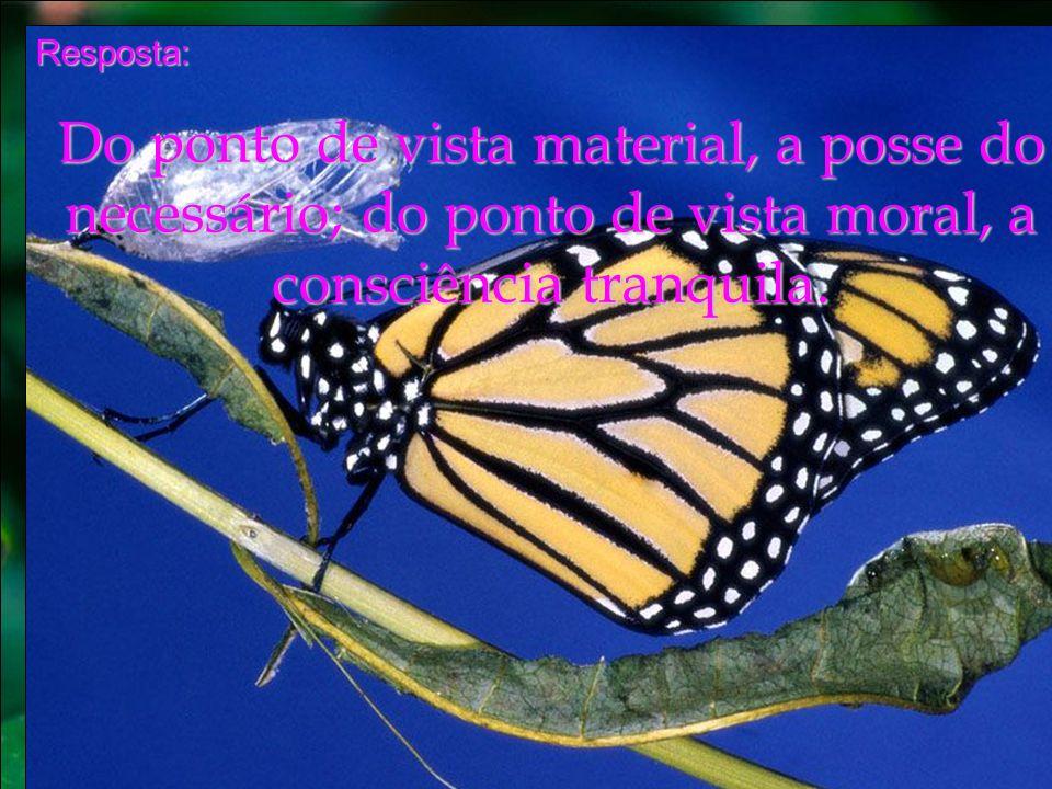 Resposta: Do ponto de vista material, a posse do necessário; do ponto de vista moral, a consciência tranquila.