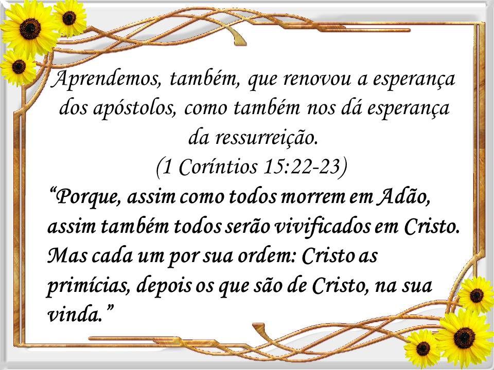Aprendemos, também, que renovou a esperança dos apóstolos, como também nos dá esperança da ressurreição. (1 Coríntios 15:22-23)