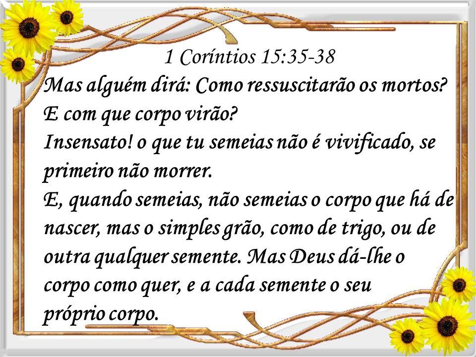 1 Coríntios 15:35-38 Mas alguém dirá: Como ressuscitarão os mortos E com que corpo virão