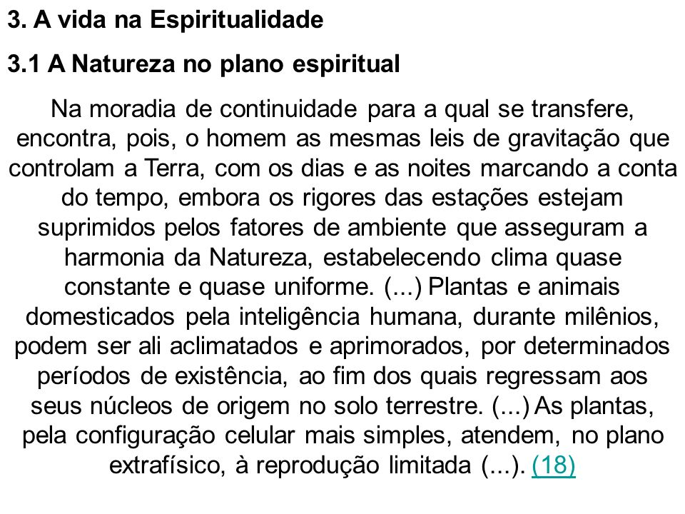 3. A vida na Espiritualidade