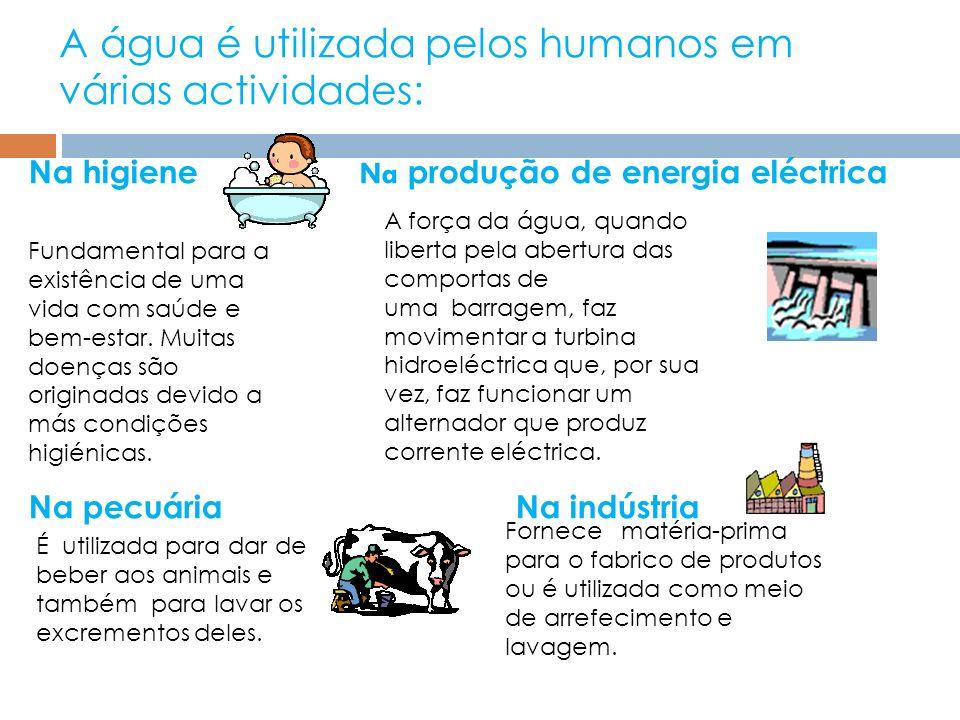 A água é utilizada pelos humanos em várias actividades: