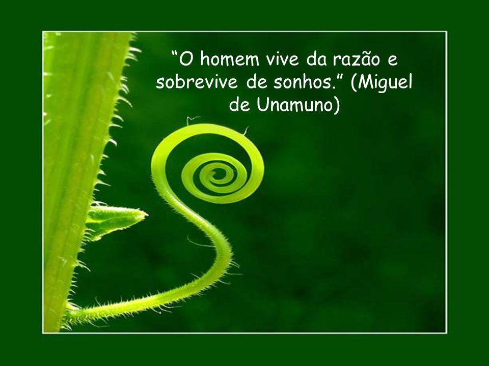 O homem vive da razão e sobrevive de sonhos. (Miguel de Unamuno)