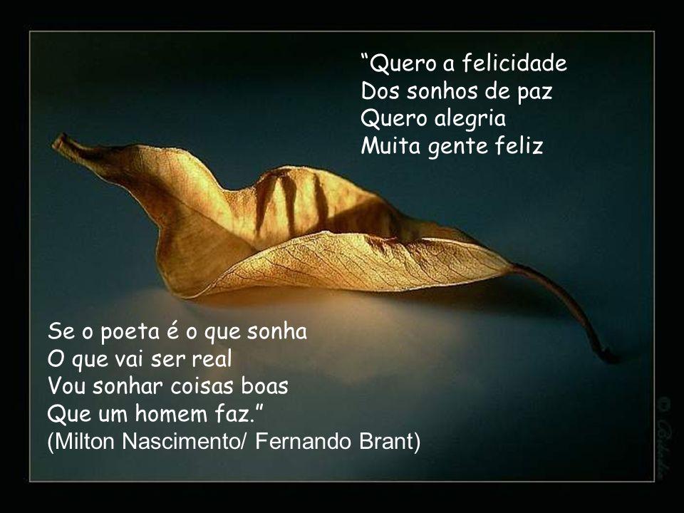 Quero a felicidade Dos sonhos de paz. Quero alegria. Muita gente feliz. Se o poeta é o que sonha.