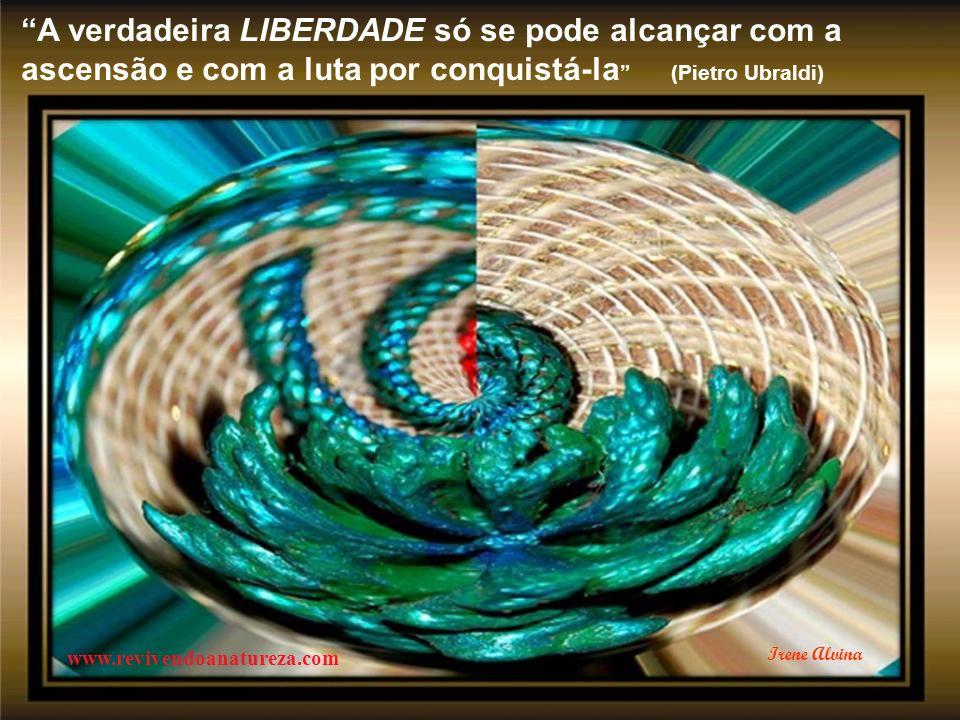 A verdadeira LIBERDADE só se pode alcançar com a ascensão e com a luta por conquistá-la (Pietro Ubraldi)